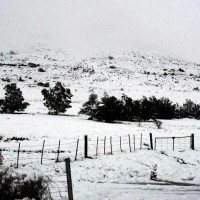 Snow in Southern Africa - for real this time!
