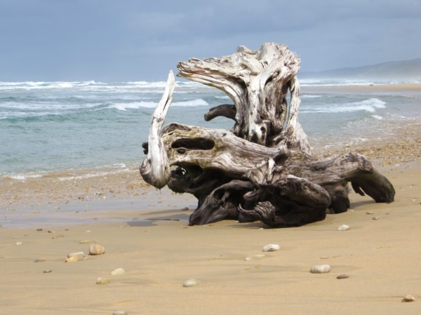 ©MWB/notesfromafrica.wordpress.com