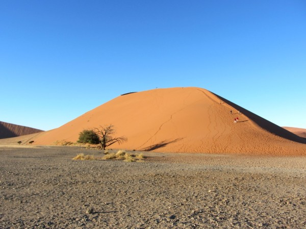 One of the huge red dunes at Sossousvlei - you can see the size next to the tree at the base as well as the tiny people climbing the dune. ©LB/notesfromafrica.wordpress.com