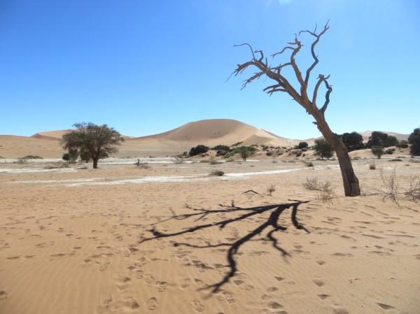 ©WMB/notesfromafrica.wordpress.com