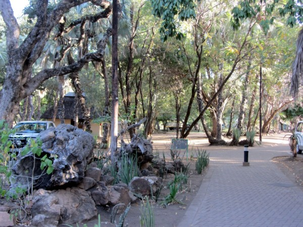 Letaba camp: walkway through the gardens in the residential area of the camp. ©LB/notesfromafrica.wordpress.com