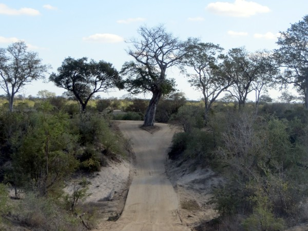 One the road to Talamati. ©WMB/notesfromafrica.wordpress.com