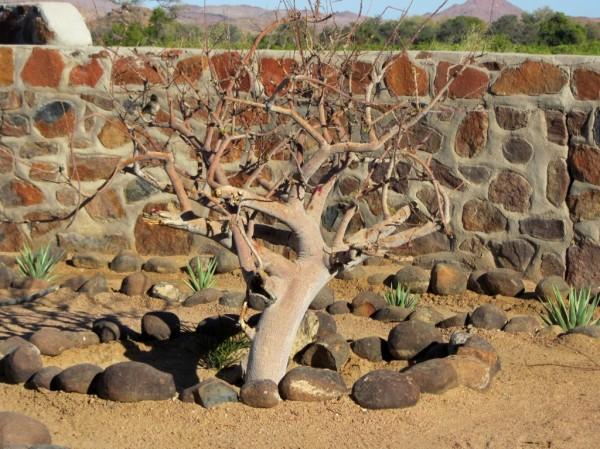 LB/notesfromafrica.wordpress.com