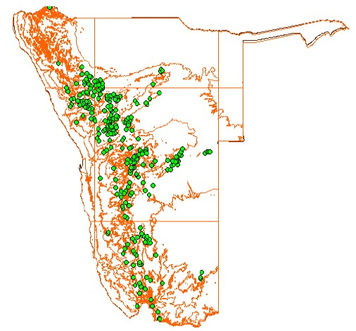 This map shows the distribution of rock art sites along Namibia's escarpment. The cluster of sites towards the north, closest to the coast represents the concentration of rock art found at Brandberg. Map source: UNESCO document